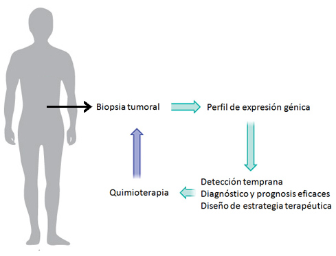 prognosis genetica en cancer